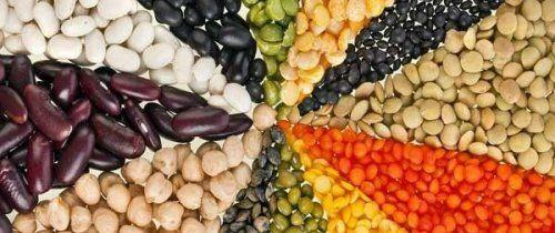 legumi Ricette tradizionali in cucina | RicetteCasa.it